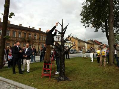 Die Bürgermeister hängen feierlich Kirschen an den Baum